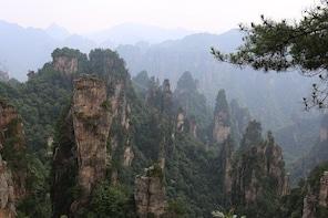 Zhangjiajie Park Avatar Mountain & Zhangjiajie Glass Bridge Day Tour