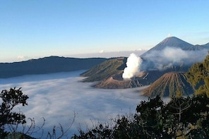 1 Day Bromo Sunrise Tour (Foreign Tourist)