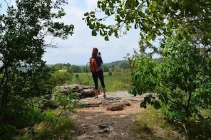Bentonville Private Full Day Hike & Winery Tour