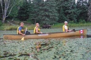 3 Day Algonquin Park Canoe Trip - Moose & Beaver Safari