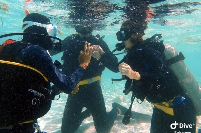 Skill training for try scuba
