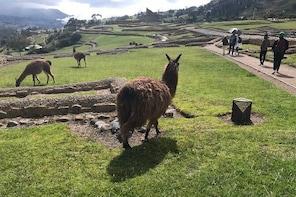 The Best of Ingapirca: an Adventure to the Ecuadorian Machu Picchu