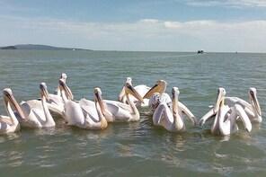 Full Bahir Dar Tour, Lake Tana Monasteries and Blue Nile Fall