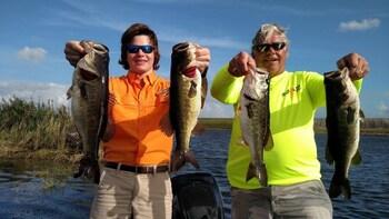 Bass Fishing Tampa Florida on Lake Tarpon