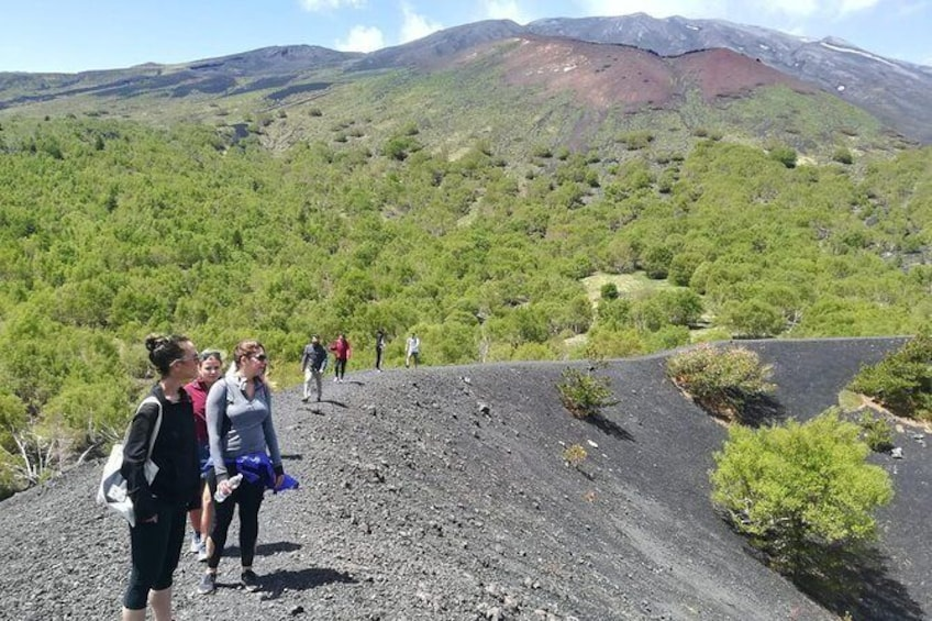 Show item 1 of 7. Mount Etna Half-Day Tour - Small Groups From Taormina