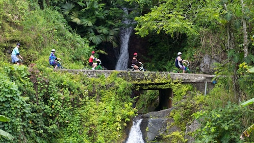 Five people on bicycles going over a bridge next to a waterfall in jamaica