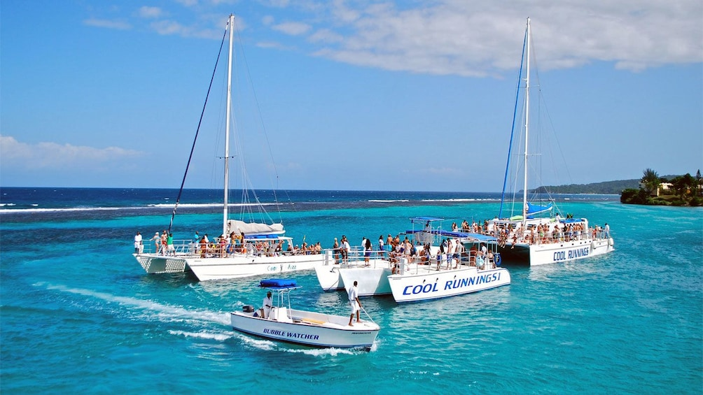 Show item 5 of 9. Cluster of catamaran sailboats in Jamaica