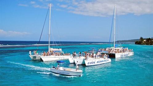Cluster of catamaran sailboats in Jamaica