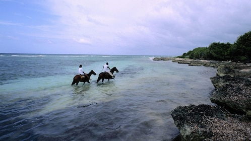 Horse backing riders in the ocean on the coast of jamaica