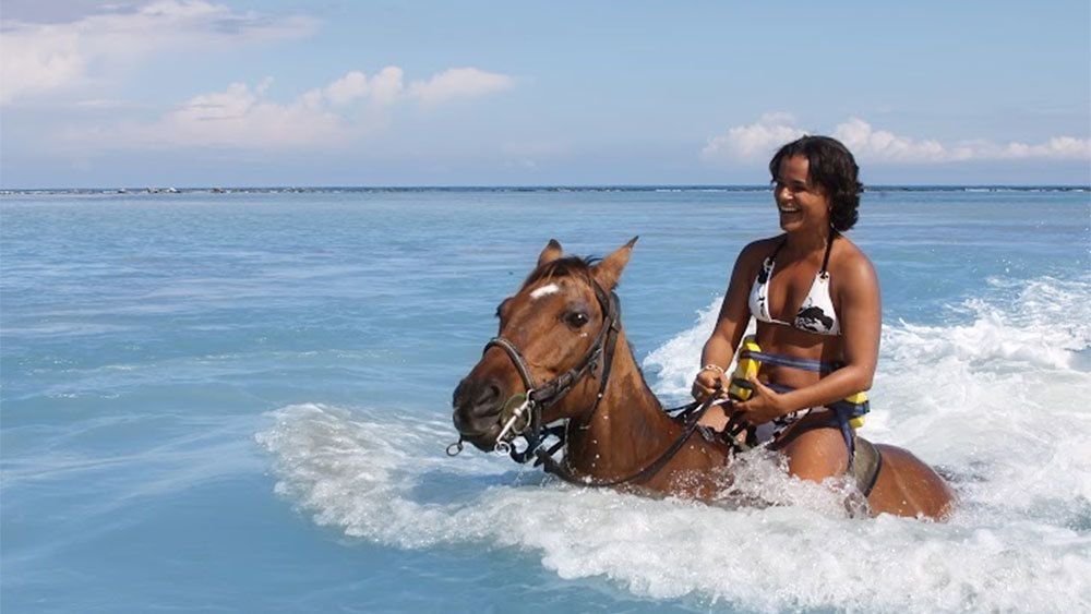 woman horse back swimming in the Caribbean sea in jamaica