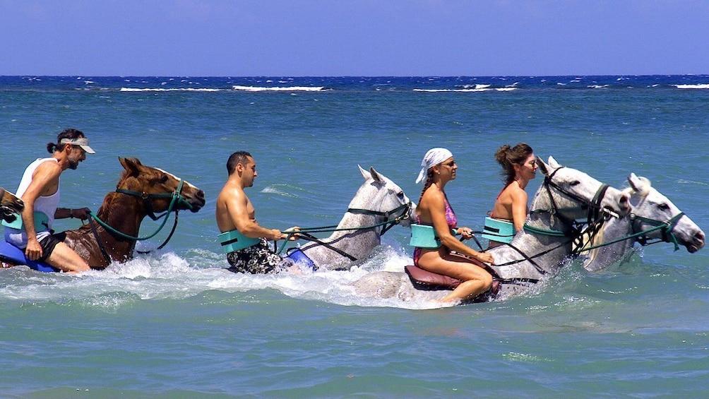 Show item 2 of 7. Horseback Beach Ride & Swim