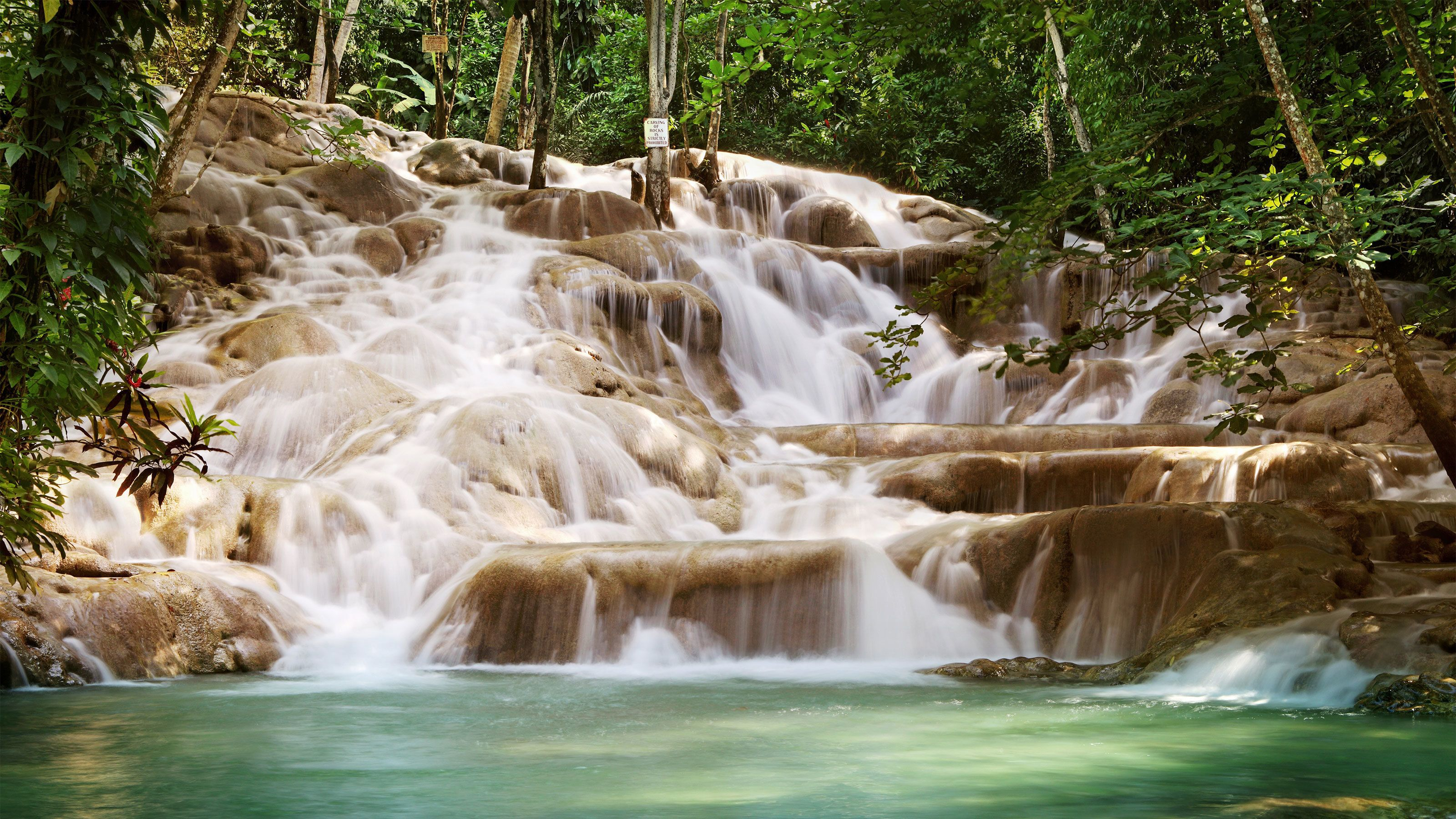 Guided Dunn's River Falls Tour