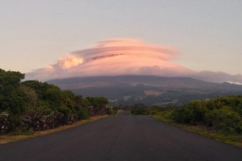 Full-Day Guided Tour in Pico Island