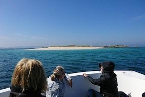 Island of Arousa: Natural Paradise