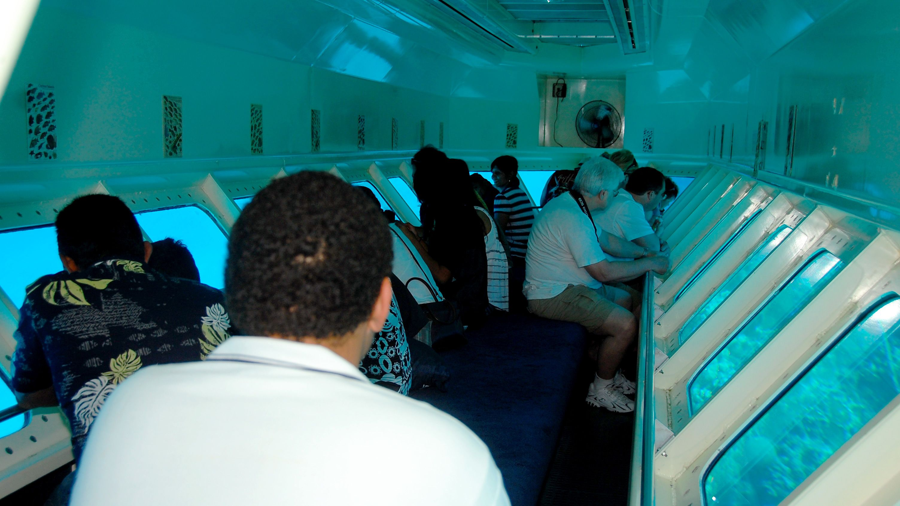 Looking at the bottom of the sea from the underwater portion of the observatory in Grand Cayman