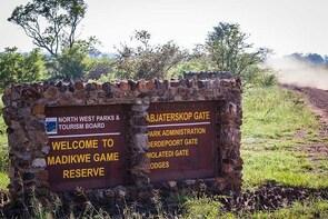 Madikwe Game Reserve Day Tour