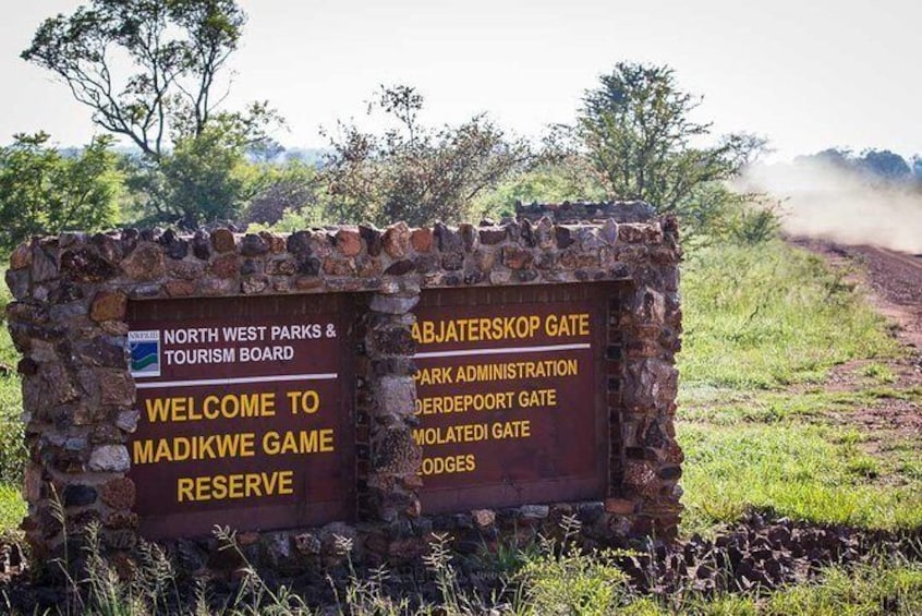 Show item 3 of 7. Madikwe Game Reserve Day Tour