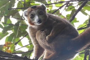 Unique discovery of the best part of Madagascar