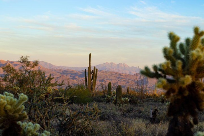 View of the Four Peaks during the nature presentation portion of the Sunset Desert Jeep Tour.