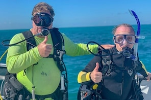 Half Day Scuba Diving Trip in the Florida Keys