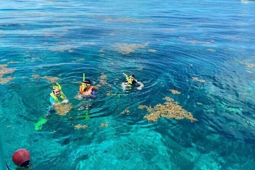 Show item 1 of 6. Half Day Snorkel Trip on Reefs in the Florida Keys