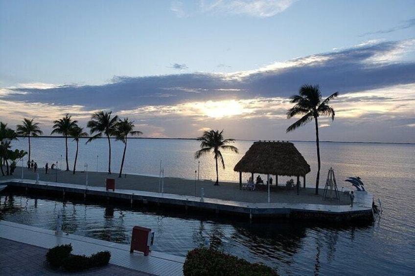 Show item 4 of 6. Half Day Snorkel Trip on Reefs in the Florida Keys