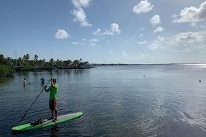 1 Hour Kayak or Paddle Board