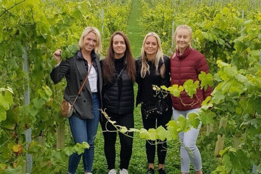 Owners vineyard tour and tasting at Oastbrook
