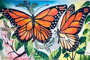 Monarch Butterfly Transformation Journey