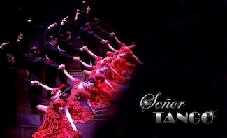 Espectáculo Señor Tango con cena opcional