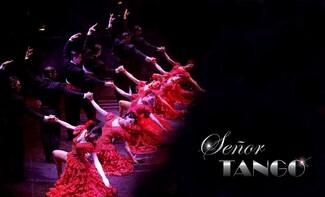 Señor Tango Show con cena opzionale