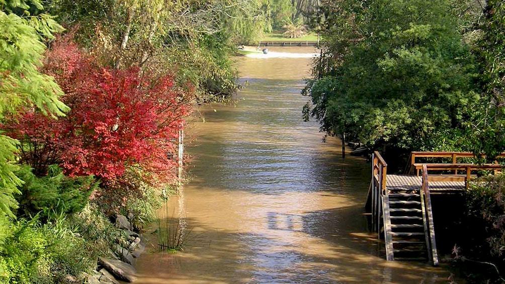 View of the Delta River in Tigre