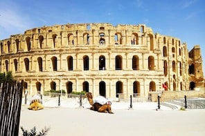 Historical Half Day Tour To El Jem From Mahdia