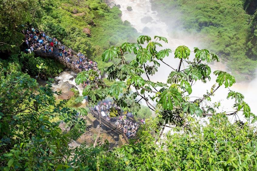 Cargar ítem 4 de 9. Iguazu Falls Tour on the Argentina Side
