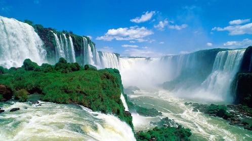Green plants surrounding the waterfall in Iguazu