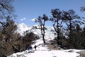 Brahmatal trek (Roopkund base camp)