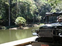 Tijuca Rainforest & Botanical Gardens Jeep Excursion
