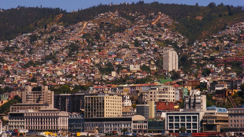 Carregar foto 7 de 7. Houses speckling hillside in Vina del Mar