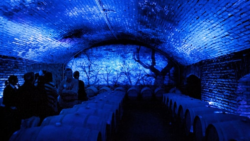 Tour group in the blue-lit wine cellar at the Concha Y Toro Winery in Santiago