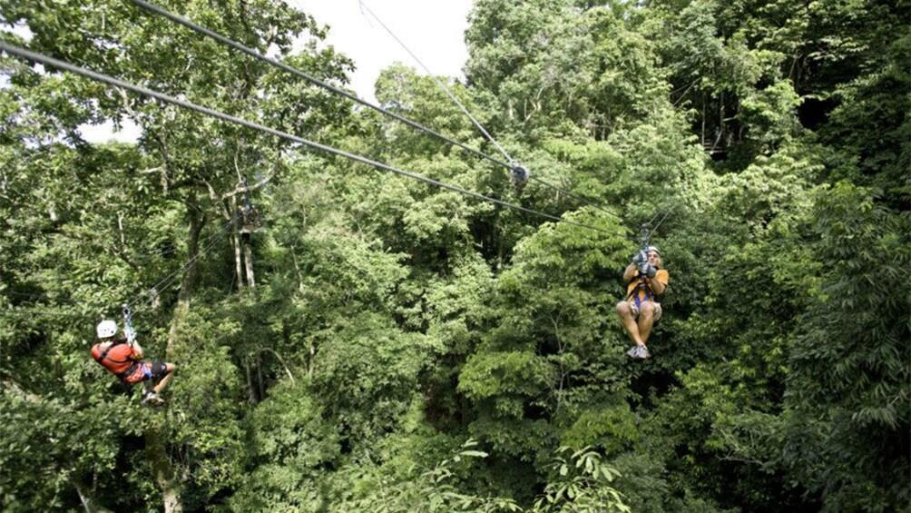 Charger l'élément 2 sur 9. Multiple ziplines between the trees in Costa Rica