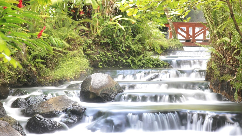 Show item 1 of 7. Tabacon Hot Springs ladder of relaxation in Costa Rica