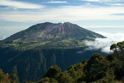 Guided Cartago, Irazu Volcano & Orosi Hot Springs Tour with Lunch