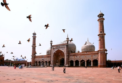 Jama Masjid Mosque, old Delhi, India_shutterstock_38967982.jpg