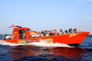 1000 Islands WildCat High-Speed Adventure Cruise