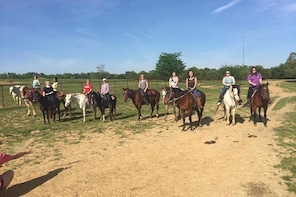 Memphis Horseback Trail Ride Tour