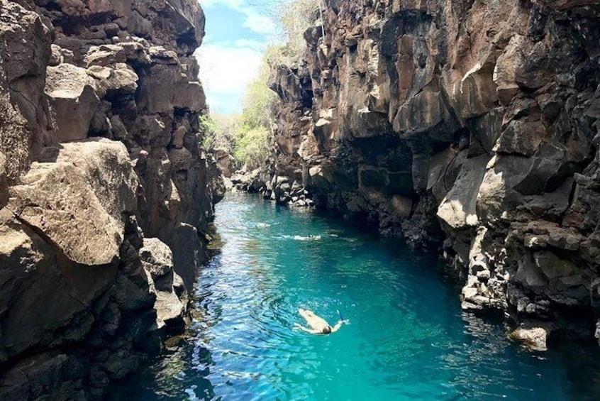 Bay Tour in Santa Cruz - Galapagos Islands