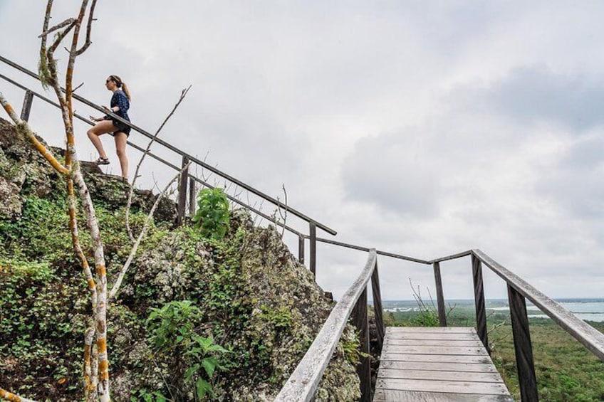 Isabela Island Wetlands Walking Tour