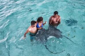 Bora Bora Eco Snorkel Cruise Including Snorkelling with Sharks and Stingray...