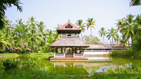 Scenic view of the Alleppey Backwaters in Kochi