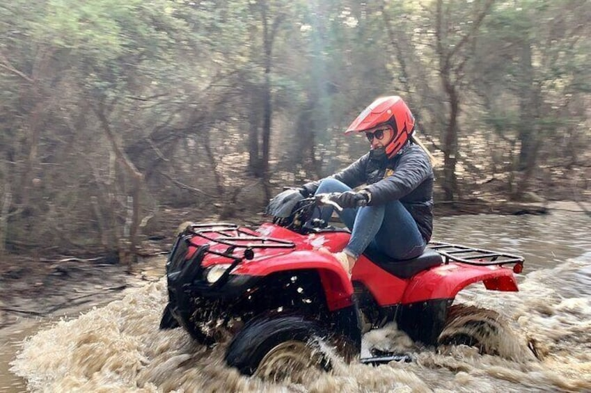 Show item 1 of 13. Half-Day Guided ATV Exploration Tour from Coles Bay